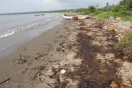 12 Goa beaches impacted by tarball invasion last month
