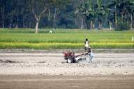 Fertiliser subsidy may be up slightly in Budget to aid farmers