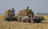 With repair shops closed, farmers fear delay in crop harvests