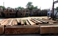 Some delaying Ayodhya settlement process: VHP