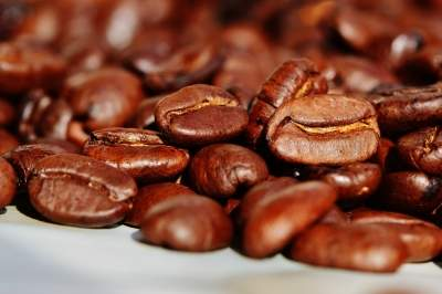 China coffee chain stocks plummet after alleged fake sales f...