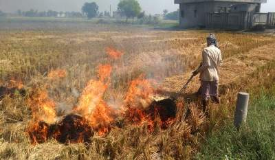 Focus on Punjab, Hry only; farm fires in other states go unnoticed