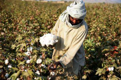 US bans import of Chinese cotton but India yet to cash in as domestic prices surge