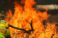 Bushfire danger elevated as heatwave continues in Australia