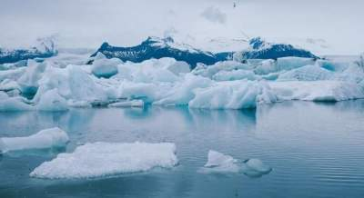 Climate change termed as 'global emergency' in biggest-ever poll