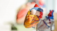 Treating the heart with scientific breakthroughs, lifestyle changes