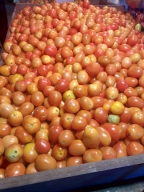 Tomato prices shoot up from Rs 10 to Rs 60 in Bengaluru