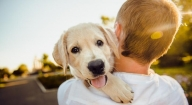Pets played lifesaving role during Covid pandemic: Study