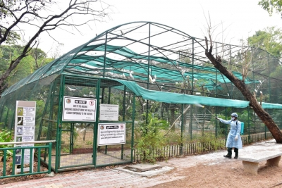 The Nehru Zoological Park (NZP) has set up a rapid action force team to monitor birds on daily basis in view of the outbreak of avian influenza or bird flu in some parts of the country.