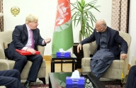 'UK supports Afghan's fight against Taliban'