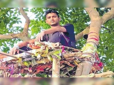 Covid positive Telangana youth spends 11 days on tree