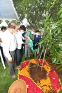CJI participates in Green India programme in Hyderabad
