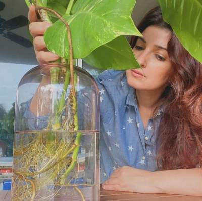 Twinkle Khanna loves to 'potter around' with her plants