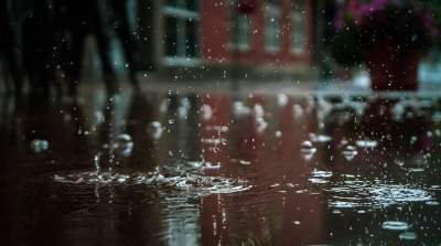 Southern peninsula to witness fresh spell of rainfall from Wednesday